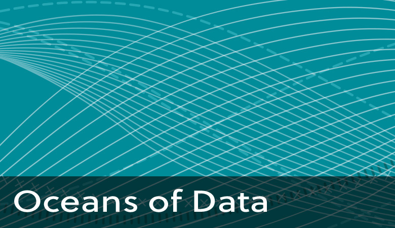 Profile of Big Data-Enabled Specialist
